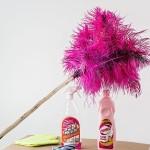 Limpieza generales pisos