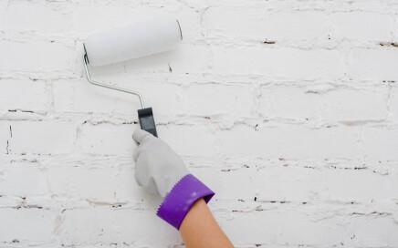 presupuesto de pintura para piso en Valencia - rodillo